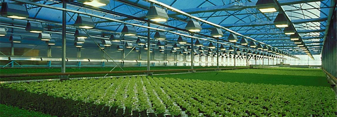 What Are The Significance Of Polycarbonate Roofing Sheet