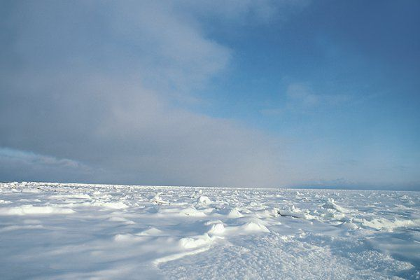 Path Across Frozen Arctic Tundra Was >> Tundra Desolate Landscape Smart Start Week 2 In 2019 Biomes