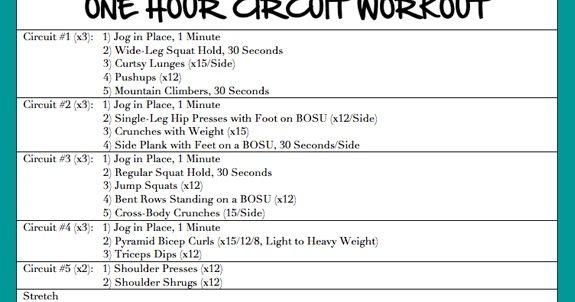 one hour circuit workout, circuit sculpt, strength workout, circuit workout,  60 minute circuit workout, 60 minute workout, rise bar, rise bar variety  pack