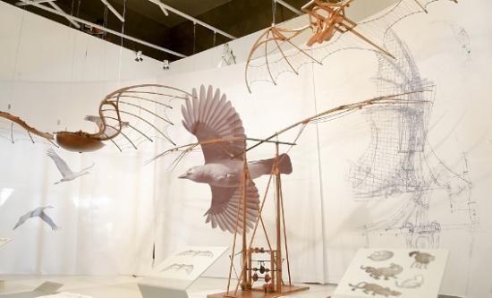 Leonardo Da Vinci na Galeria do Sesi - Divulgação
