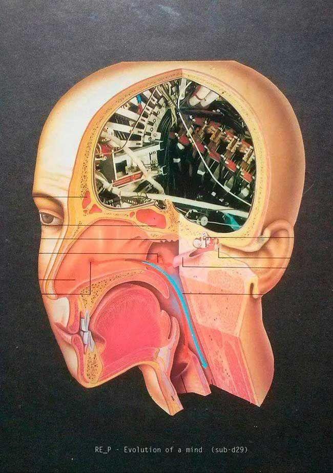 "Transistora | REVIEW: RE_P ""EVOLUTION OF MIND"""