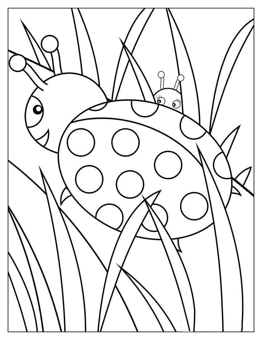 Ladybug Coloring Page Bug Coloring Pages Printable Coloring Book