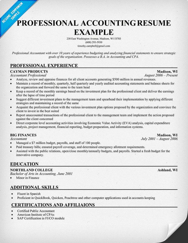 Professional Accounting Resume Resume Samples Across All - Cpa Resume Examples