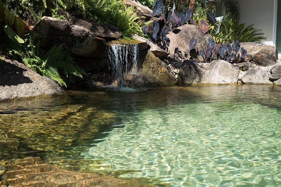 Piscina natural em grota piscina pinterest piscinas Piscina natural jardin