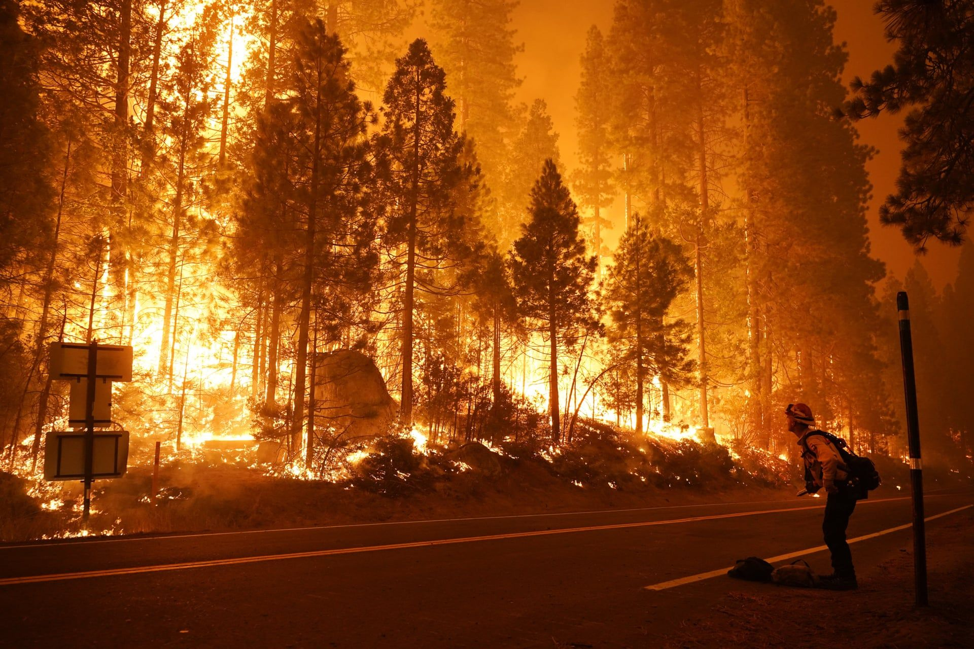 California Wildfires In Pictures In 2020 California Wildfires San Bernardino National Forest Pictures