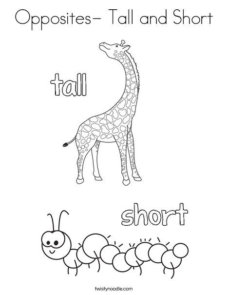 Opposites Tall And Short Coloring Page Twisty Noodle English