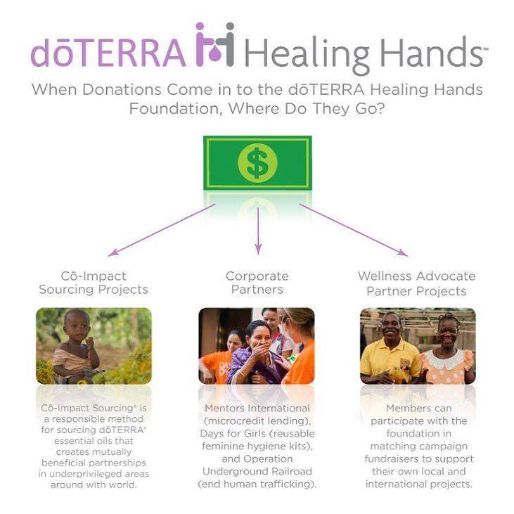 Afbeeldingsresultaat voor healing hands foundation doterra