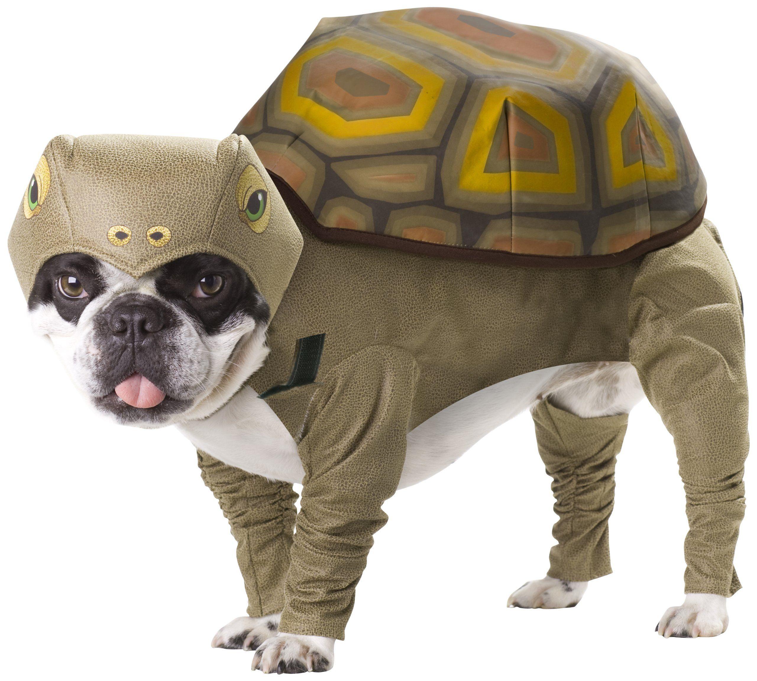 Amazon Com Animal Planet Pet20102 Tortoise Dog Costume Large