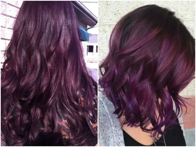 Pin By Kaitlin Williamson On Hairstyle Plum Hair