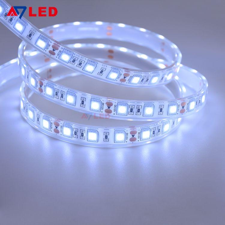 Led Strip Light 24v Rohs