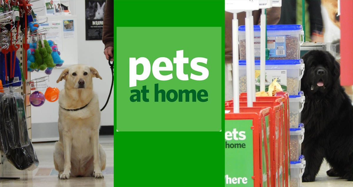 30 Day Pet Nutrition Challenge With Pets At Home Animal Nutrition Pets Animal House