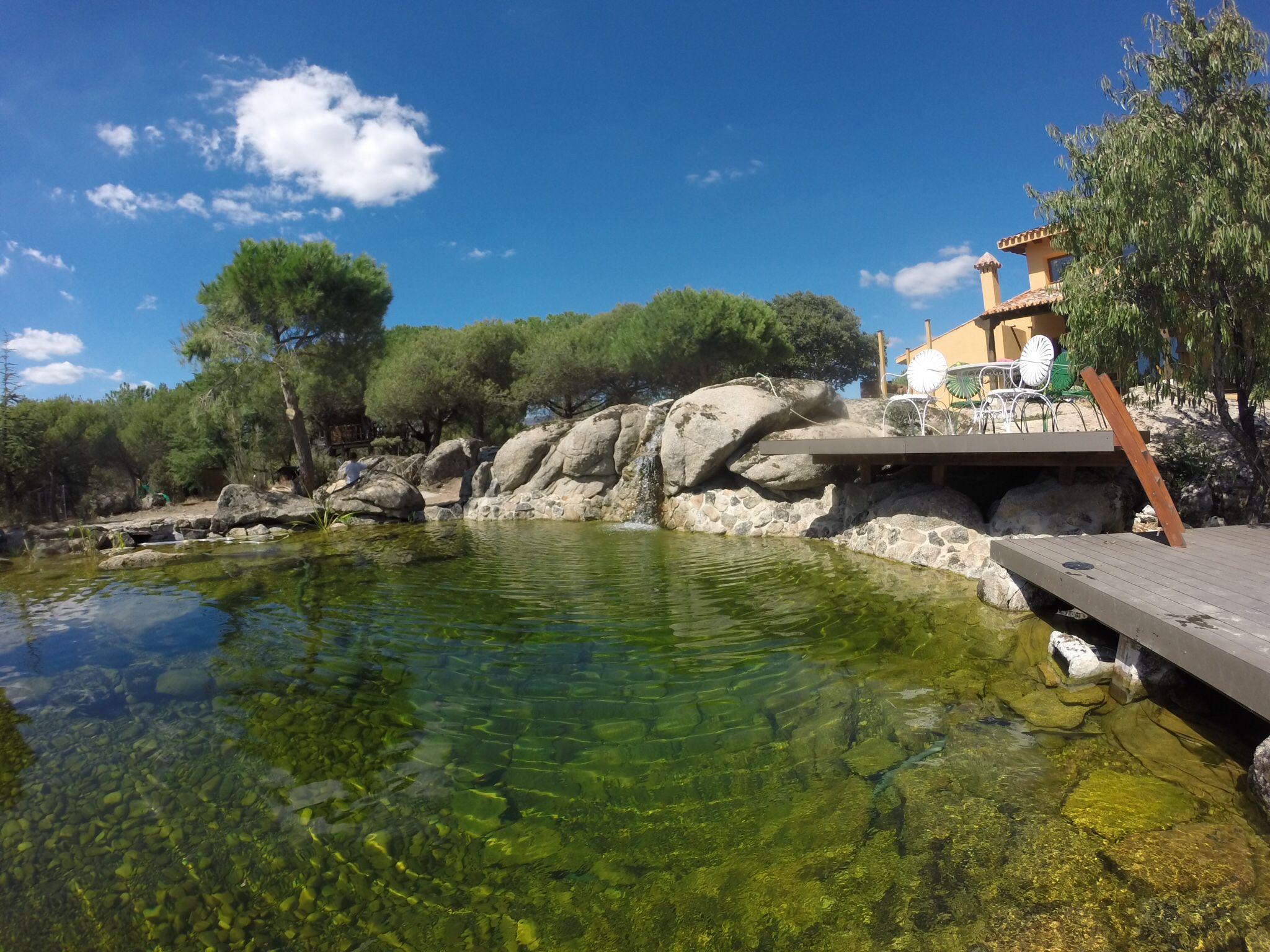 Laguna Hecha Por Piscinas Y Lagunas Naturales S L En Madrid  ~ Como Construir Una Piscina Natural
