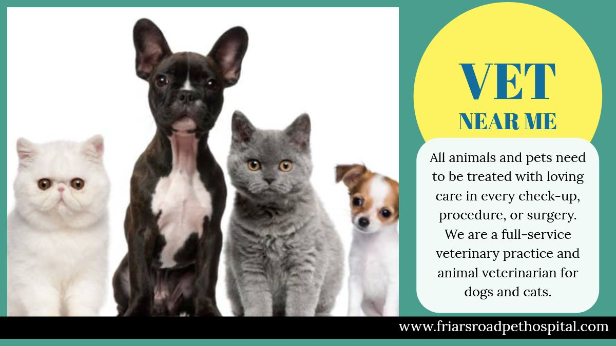 Our Vet Near Me Provides Urgent Care When Your Pets Are In Crisis Vet Near Me Is The Perfect Complement To Your Prim Vets Near Me Animal Hospital Veterinarian