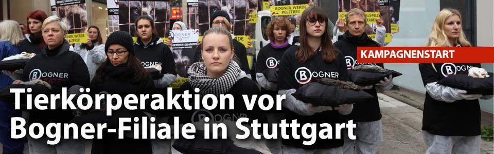 """""""Bogner tötet!"""" AntiPelzKampagne startet vor"""