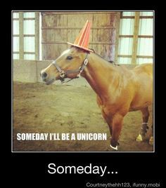 someday I'll become a unicorn