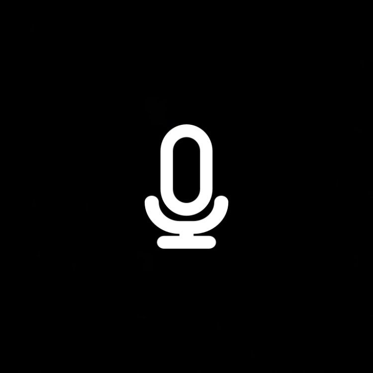 Voice Memos Icon Ios Icon App Icon Iphone Icon