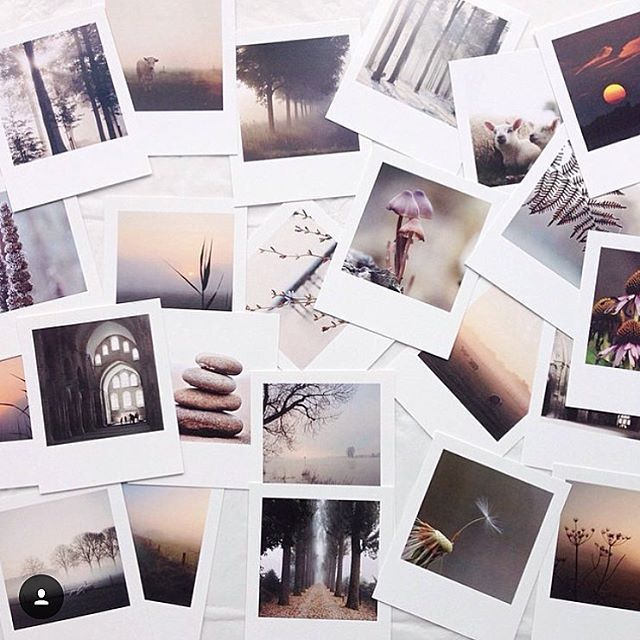 Polaroids printed by @viamartine. (by @lidyvps) #gift #polaroids #retroprints #memories #hiqhquality #viamartine