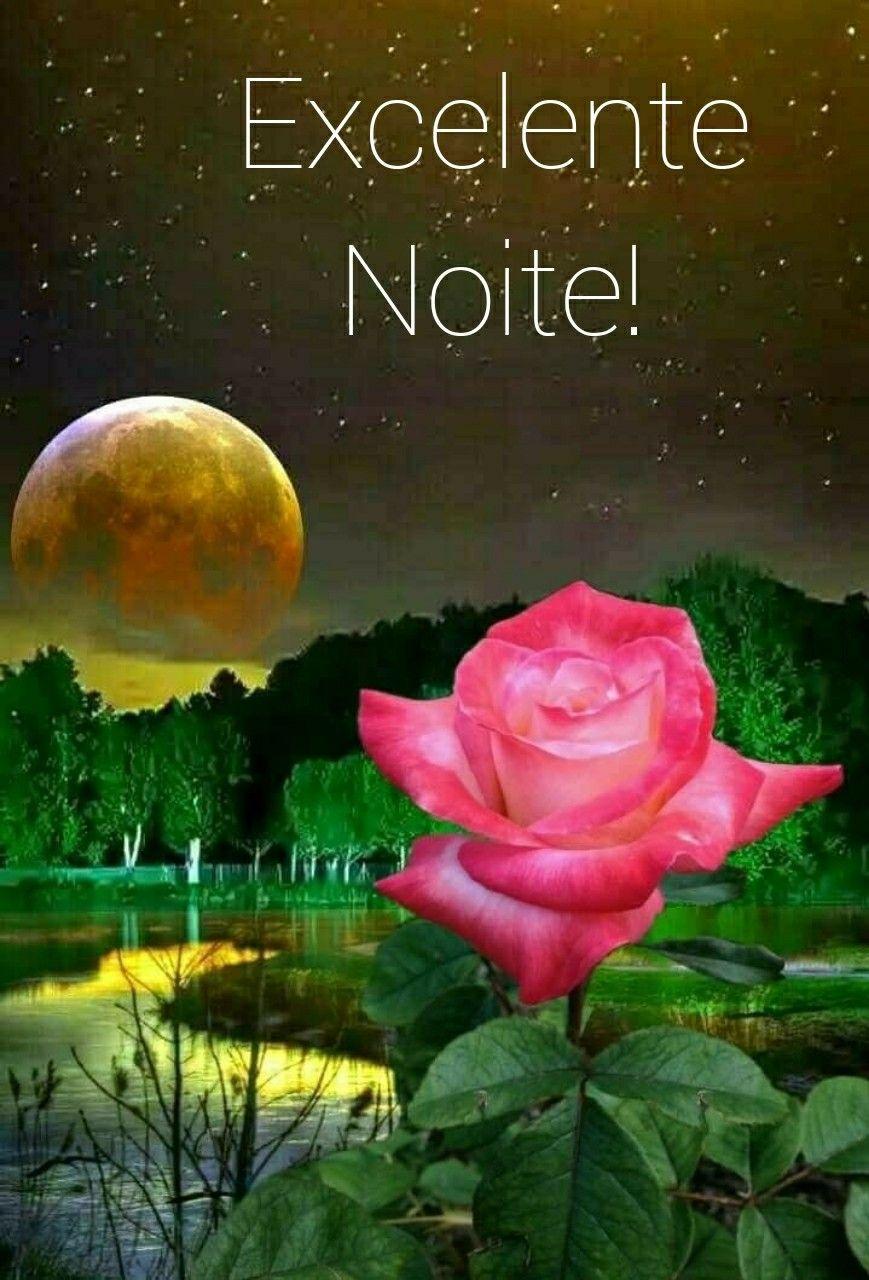 Pin De Christena Lewis Em Roses Flor Boa Noite Rosas Pretas