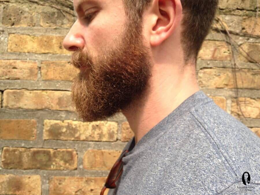 How to Trim a Beard Shaving neck beard, Beard neckline