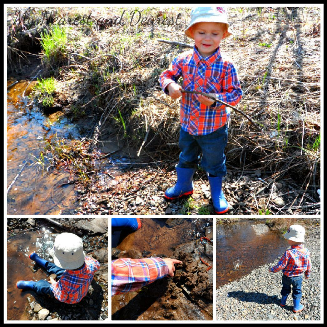 Let Your Child Get Hands on In Nature
