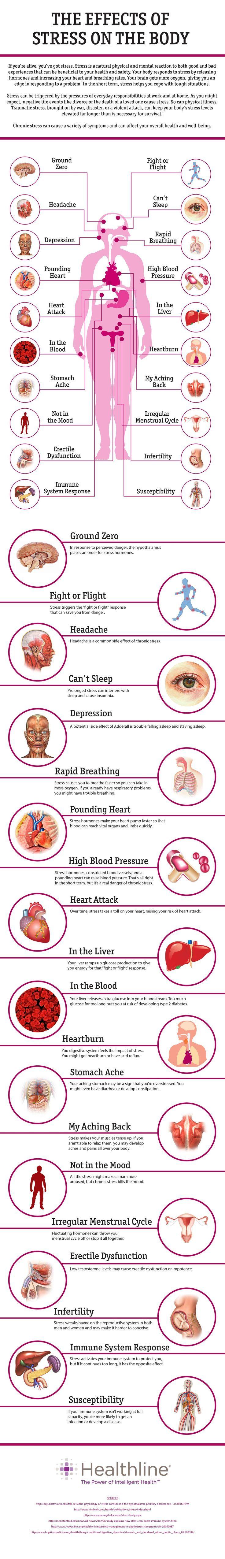 The Effects of Stress on Your Body   Gesundheit, Ratgeber gesundheit ...
