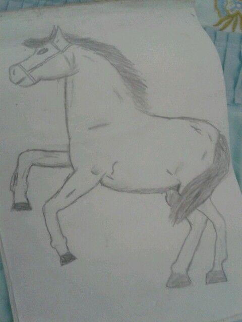 Karakalem Bir At Resmi Atlar
