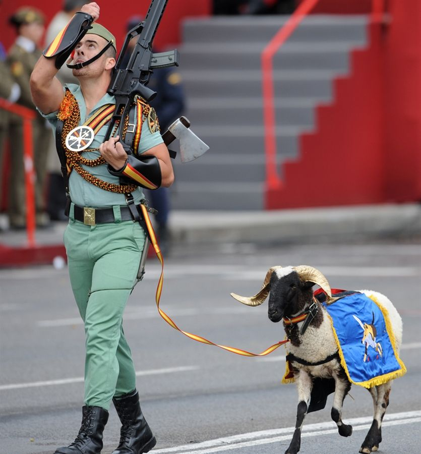 The Spanish Foreign Legion Needs It S Own Rad Board The Goat With The Gilded Horns Need I Say More Men In Uniform Military Men Spanish