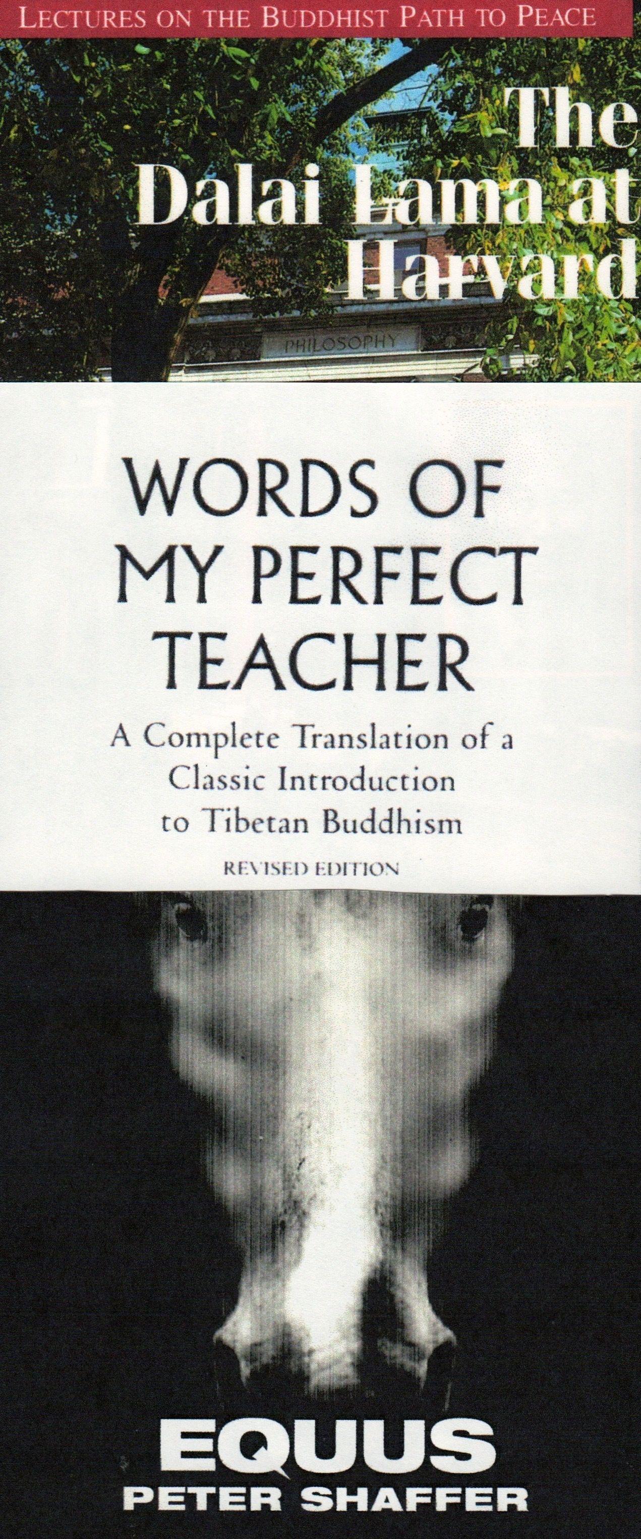 Books you might care to read buddhism buddhist tibetan