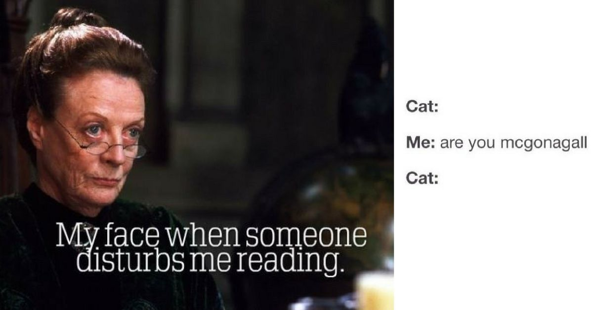 21 Professor Mcgonagall Memes Only True Potterheads Will Appreciate Harry Potter Facts Harry Potter Pictures Slytherin Harry Potter