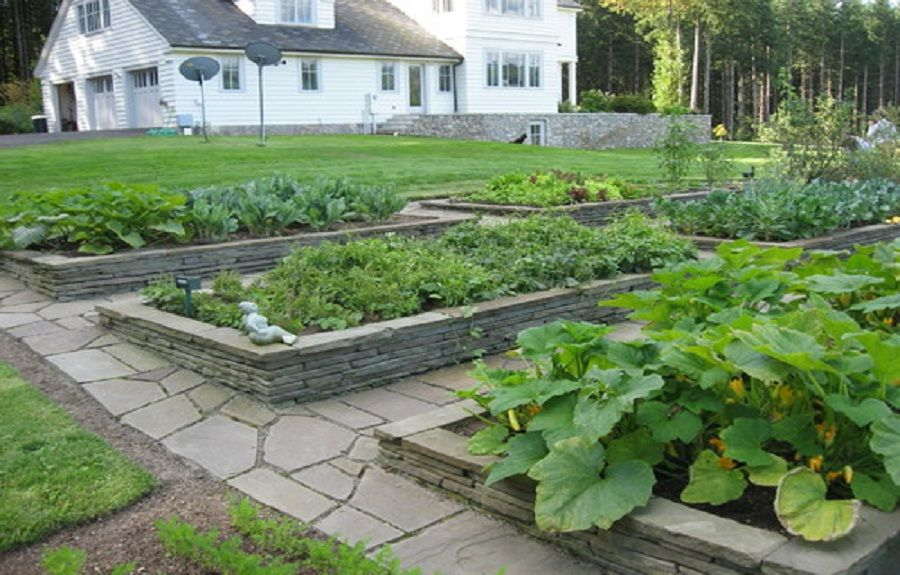 The Raised Bed Garden Plans For Minimalist Gardening : Elegant Stacked  Stone Raised Garden Beds Designs