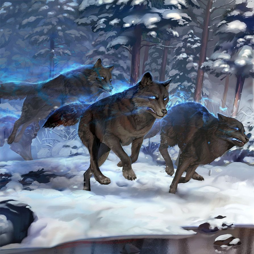 Enchanted Dire Wolf by crutz on DeviantArt | Werewolves and