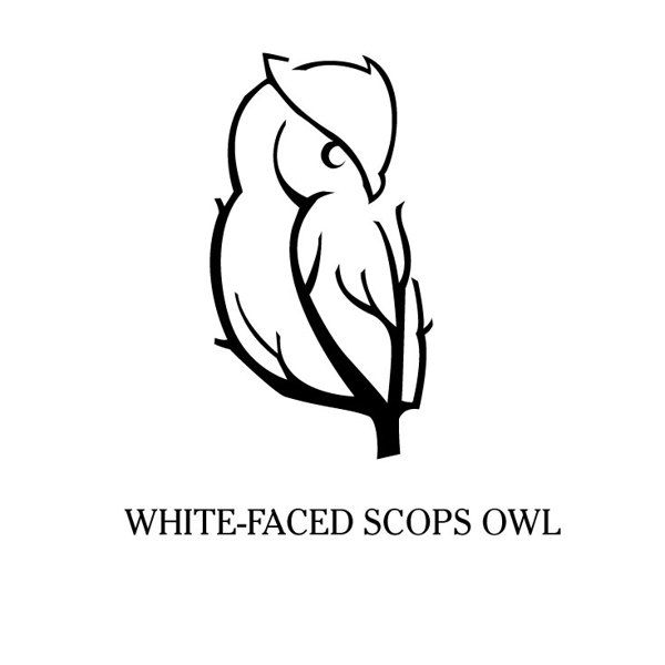 7993e6f38423bb973f936fb2e68caf45 35 Owl Logo Designs For Your