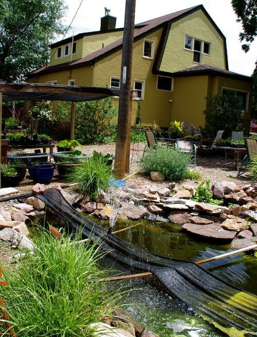 Summerland Gardens And Nursery Colorado Springs Co