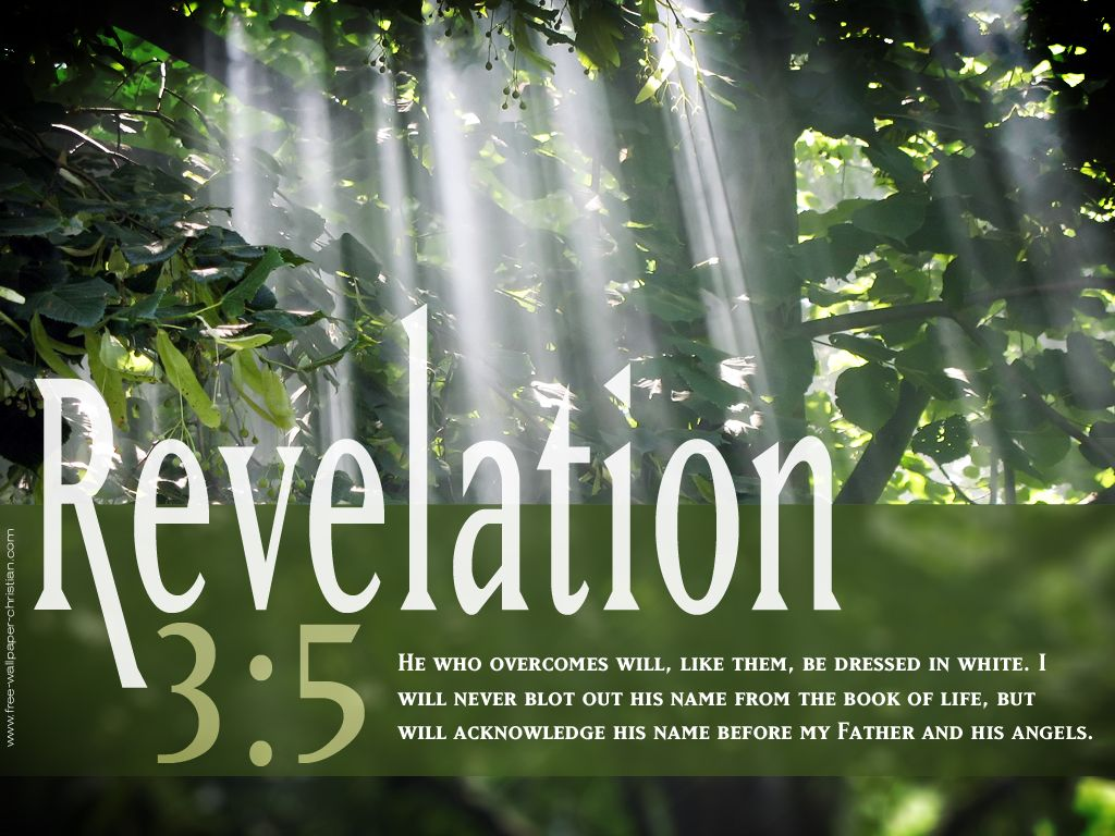 Quotes About Life From The Bible Reveltion 35  Places To Visit  Pinterest  Bible Scriptures