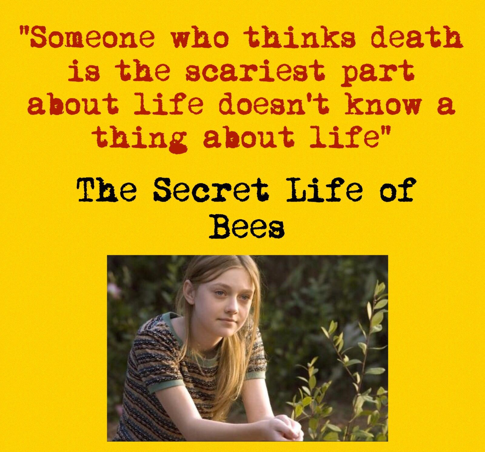 one of my fav quotes from the secret life of bees sue monk kidd secret life of bees quote