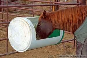 Stable And Equine Horse Feeder Hay Feeder Horses