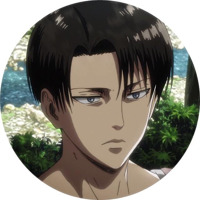 Levi Ackerman Icons Tumblr Levi Ackerman Attack On Titan Levi Attack On Titan Anime