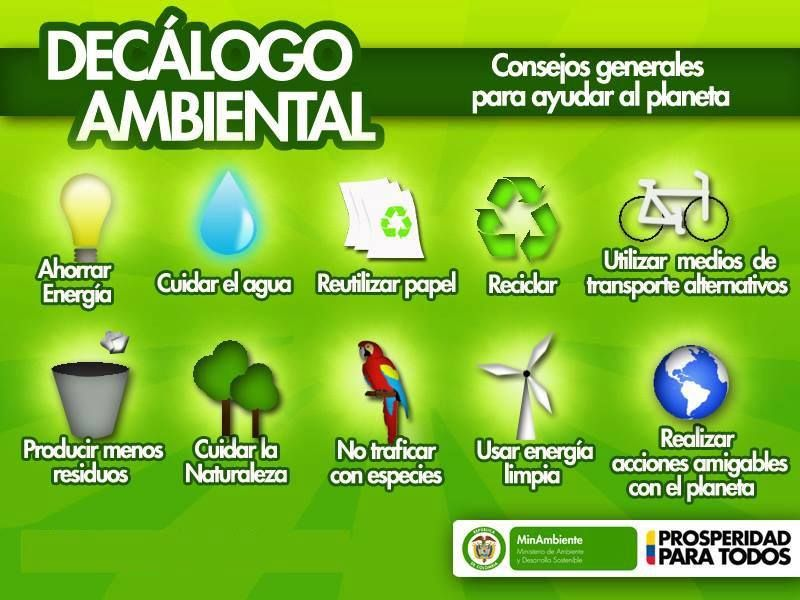 Decalogo Ambiental Infografia Ecologia Medioambiente Con