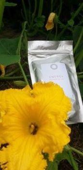 Přírodním kofeinem nabitá tableta Ramissio Energy je kombinací guarany a macy, vzácných rostlin z amazonských pralesů http//stalezdravi.ramissio.com/