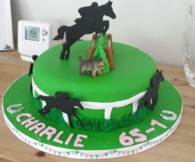 Horse Racing Cake Nick Bday Pinterest Racing Cake Cake And