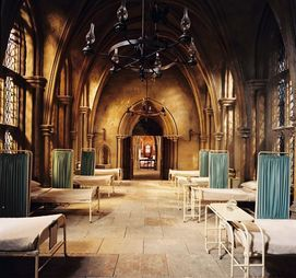 Harry Potter Quiz -In wich Hogwarts house do you b