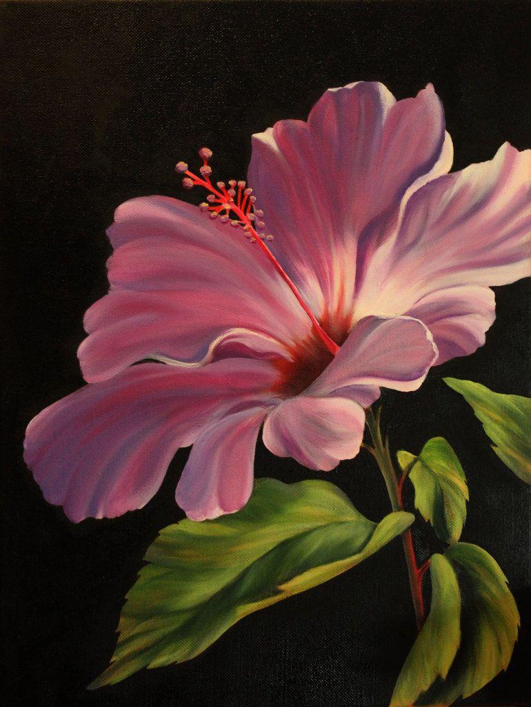 Robert warrens hibiscus drawing painting wall art etc robert warrens hibiscus izmirmasajfo