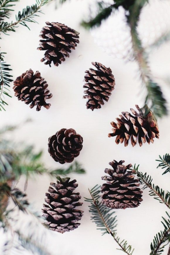 Creating Your Own Traditions Diy Pinecone Ornaments Wallpaper Iphone Christmas Iphone Wallpaper Fall Pinecone Ornaments