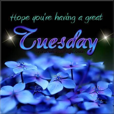 Hope your having a great Tuesday | Tuesday greetings, Good morning tuesday,  Happy tuesday quotes