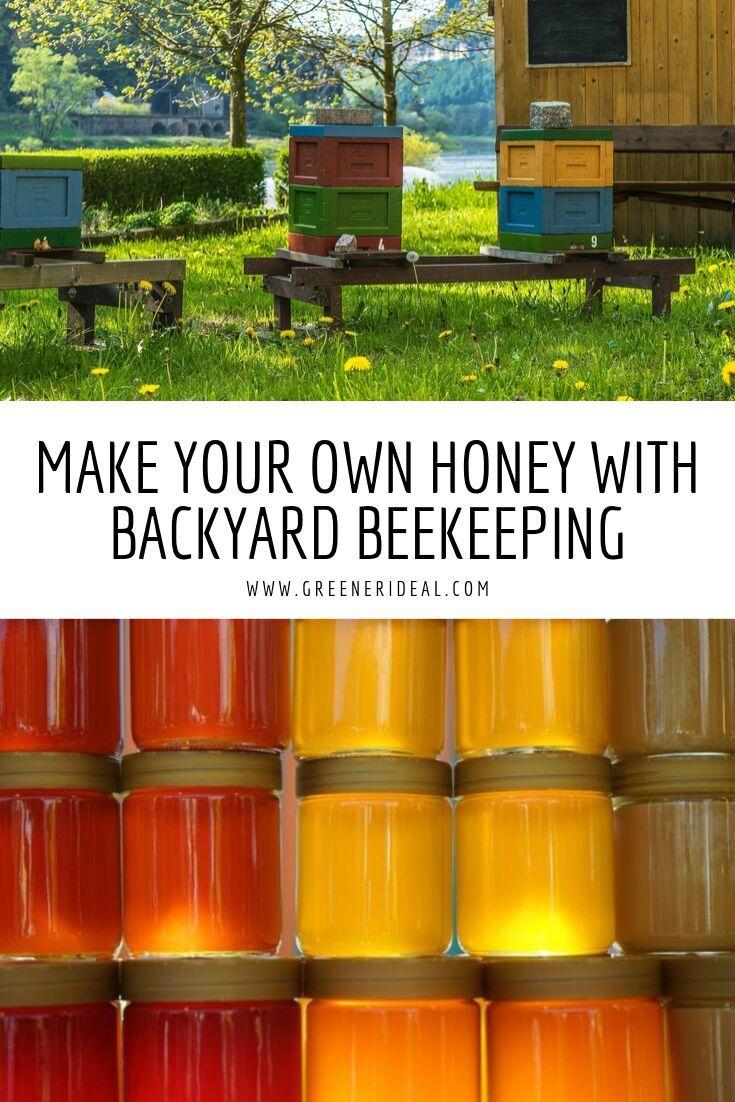 Make Your Own Honey with Backyard Beekeeping | Greener ...