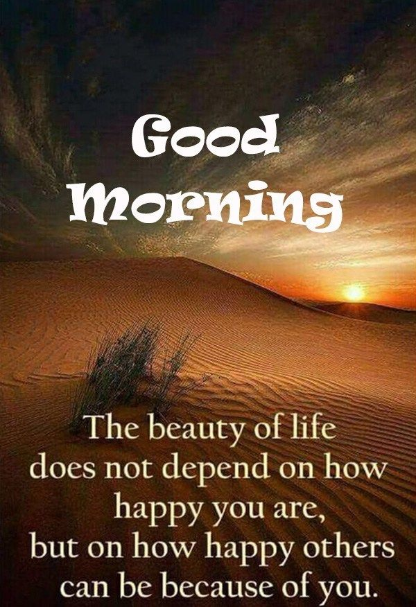Some Of The Best Good Morning Quotes Jio Quotes Good Morning Thought Goodmorning Quotes Sunris Good Morning Quotes Good Morning Motivation Morning Quotes