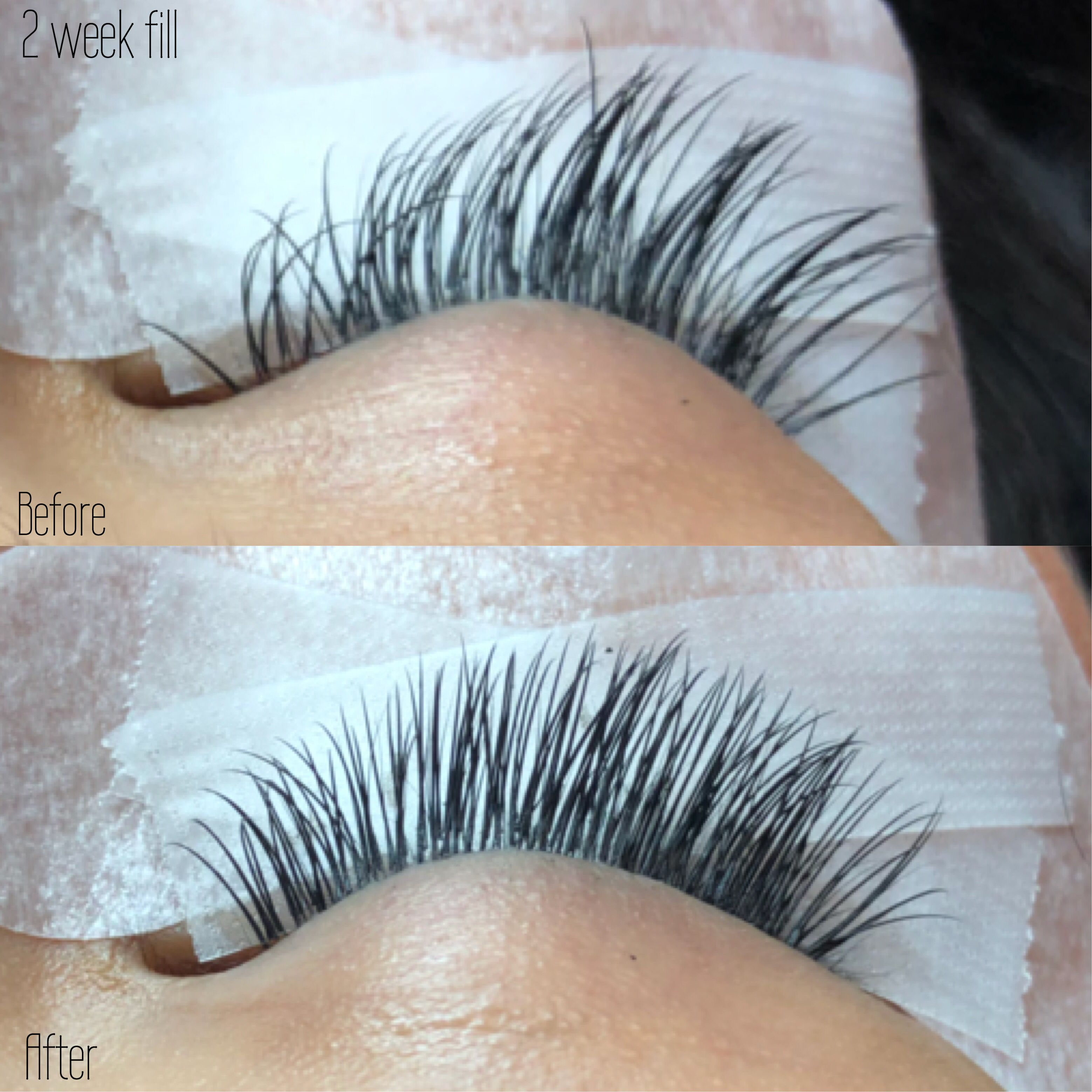 Before and after 2 week Classic Lash Extension fill | Lash