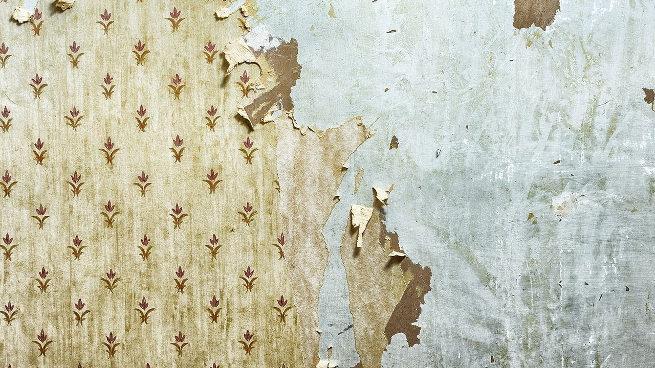 Stuck with Old Wallpaper? Paint Over It Miller Hobbs