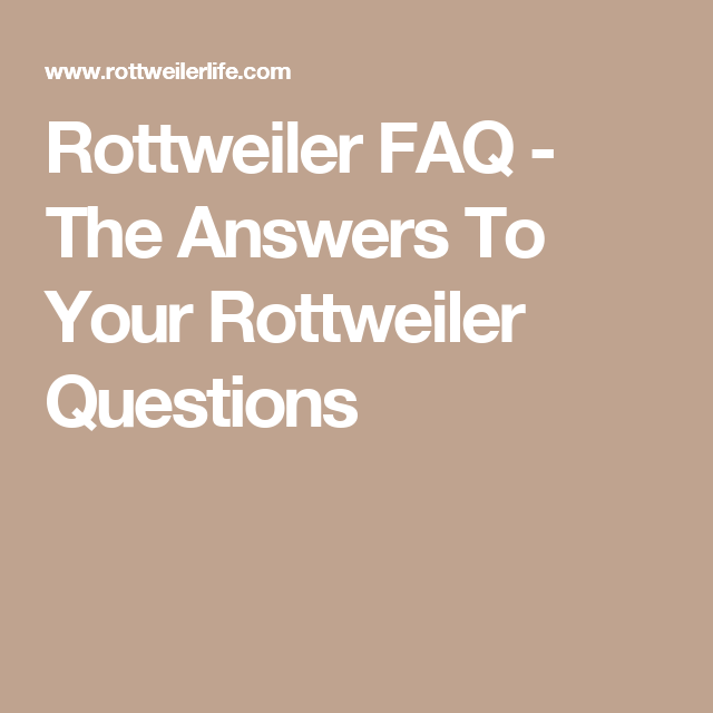 Rottweiler FAQ - The Answers To Your Rottweiler Questions