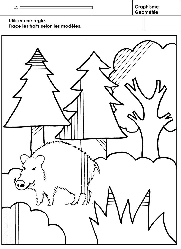La forêt, atelier autonome tracer des traits à la règle ...